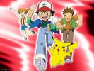 2479-pokemon-002-exjll.jpg